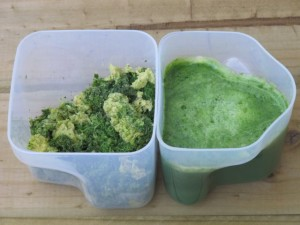 Green Juice and pulp
