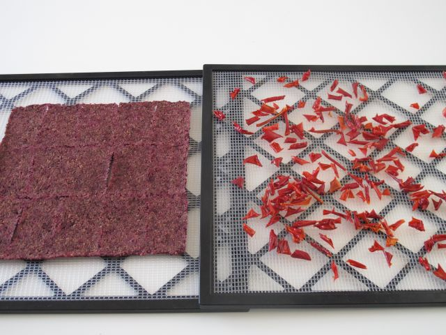 Dehydrating beetroot toast (and other stuff)